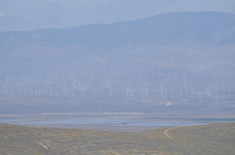 Antelope Valley – место обитания калифорнийских маков