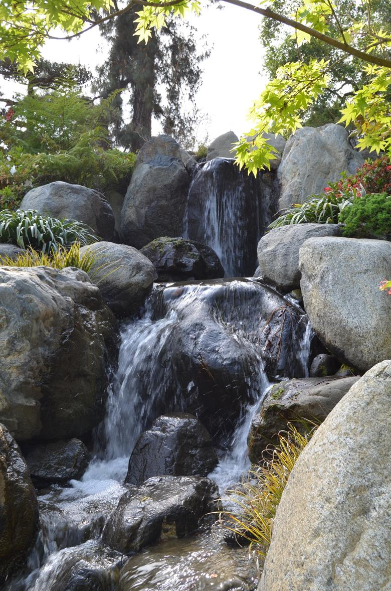 Huntington Botanical Gardens