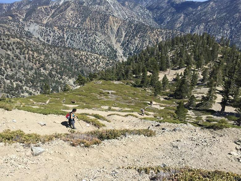 Mount Baldy trail