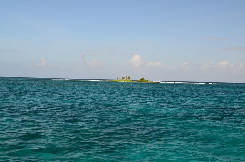 Дайвинг на острове Утила в Гондурасе