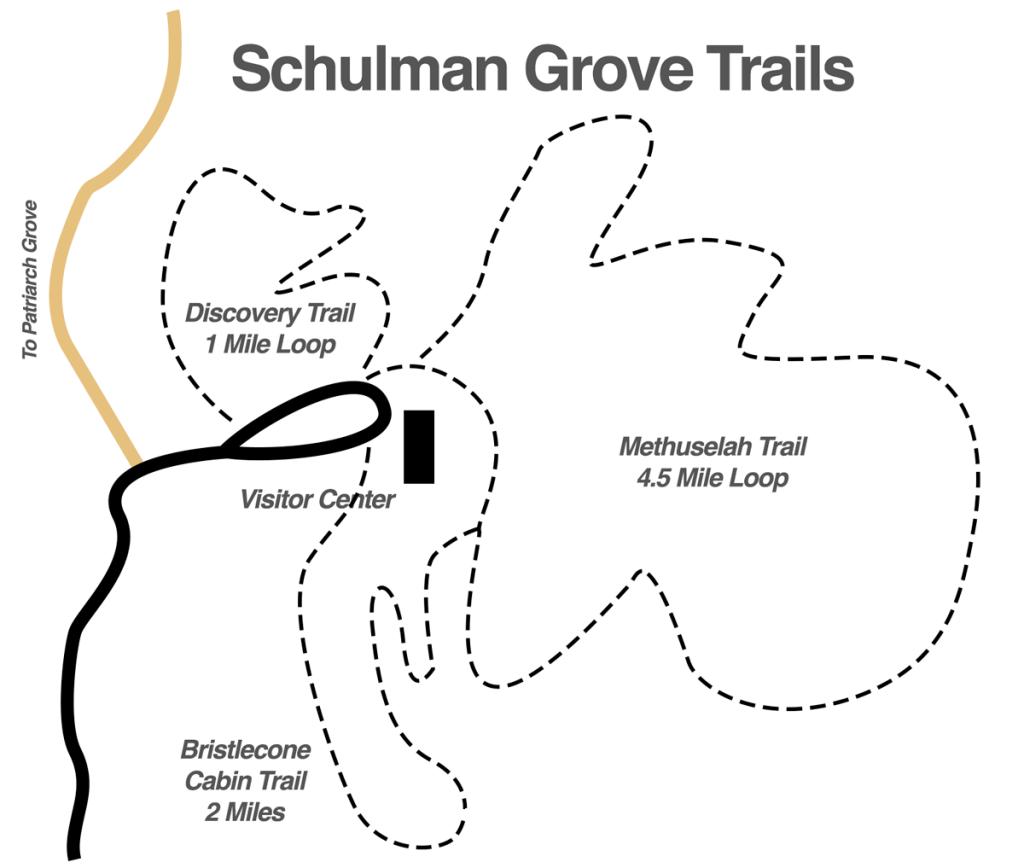 schulman-grove-trails
