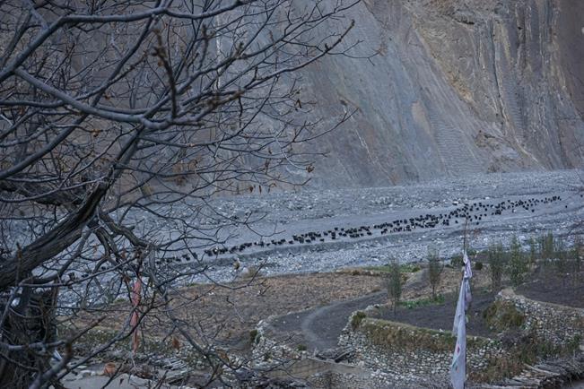 Тропа из Муктинатх в Лупру